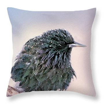 Poor Decision Throw Pillow by Betty LaRue