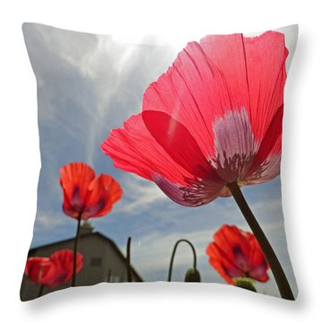 Poppies And Sky Throw Pillow by Robert Meyers-Lussier