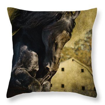 Power House Horse D1496 Throw Pillow by Wes and Dotty Weber