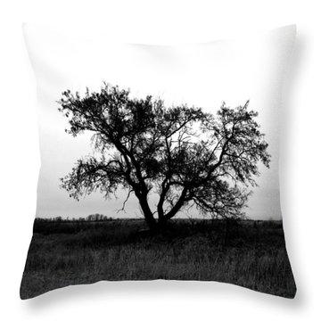 Prairie Dog Throw Pillow by Jerry Cordeiro