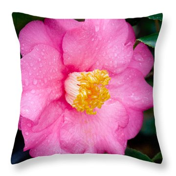 Pretty In Pink 2 Throw Pillow by Rich Franco
