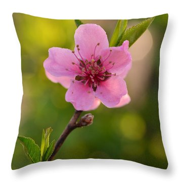 Pretty Pink Peach Throw Pillow by JD Grimes