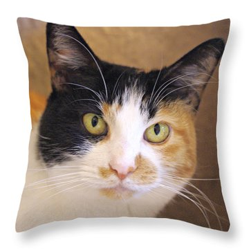 Pretty Tequila Throw Pillow by Marilyn Wilson