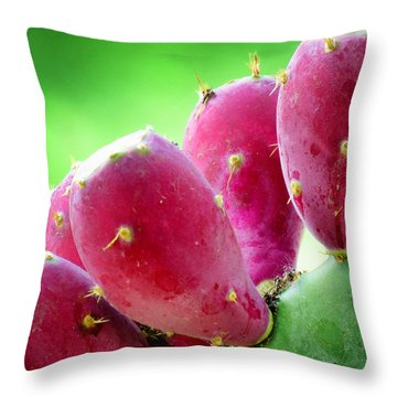 Prickly Pear Throw Pillow by Diane Wood