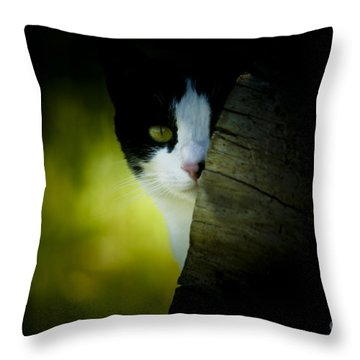 Privacy Please Throw Pillow by Kim Henderson