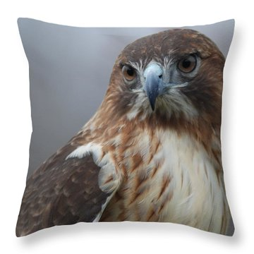 Proud Prince Of The Skies Throw Pillow by Richard Bryce and Family