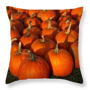 Pumpkin Strike Throw Pillow by LeeAnn McLaneGoetz McLaneGoetzStudioLLCcom