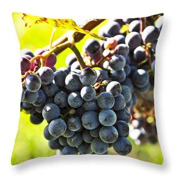 Purple Grapes Throw Pillow by Elena Elisseeva