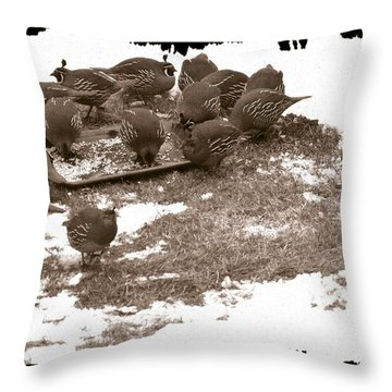 Quail Having Lunch Throw Pillow by Will Borden