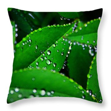 Rain Patterns Throw Pillow by Toni Hopper