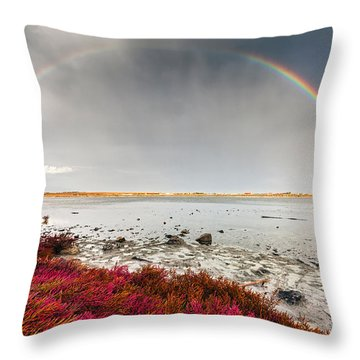 Rainbow By The Lake Throw Pillow by Evgeni Dinev