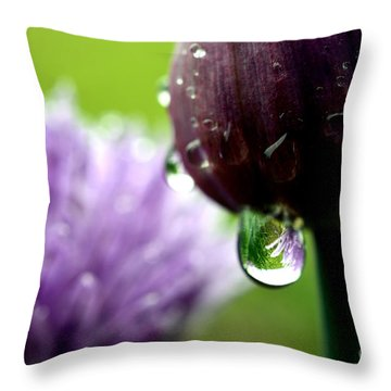 Raindrops On Chives In Bloom Throw Pillow by Thomas R Fletcher