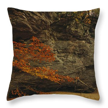 Raven Rock, Trail, And Autumn Colored Throw Pillow by Raymond Gehman
