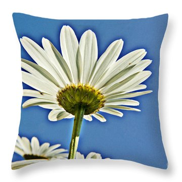 Reach For The Blue Sky Throw Pillow by Darleen Stry