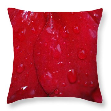 Red And Wet Throw Pillow by Paul Ward