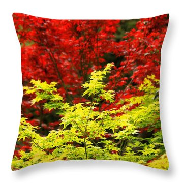Red And Yellow Leaves Throw Pillow by James Eddy