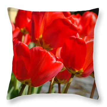 Red Art Spring Tulip Flowers Floral Throw Pillow by Baslee Troutman