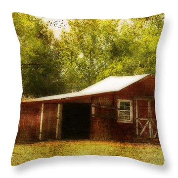 Red Barn Throw Pillow by Joan Bertucci