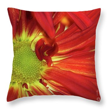 Red Daisy Too Throw Pillow by Sabrina L Ryan