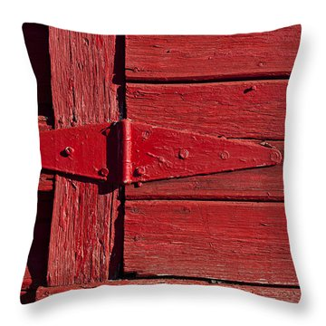 Red Door Henge Throw Pillow by Garry Gay