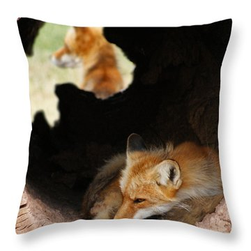 Red Fox Dreaming Throw Pillow by Ernie Echols