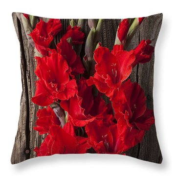 Red Gladiolus Throw Pillow by Garry Gay