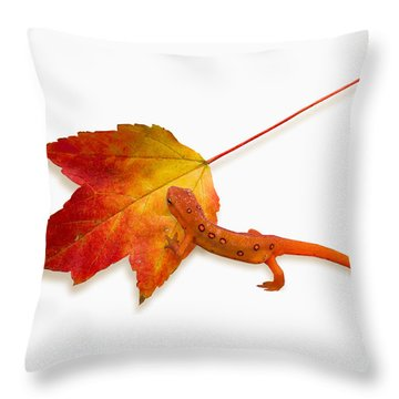 Red Spotted Newt Throw Pillow by Ron Jones
