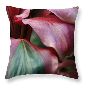 Red Ti - Cordyline Terminalis Throw Pillow by Sharon Mau