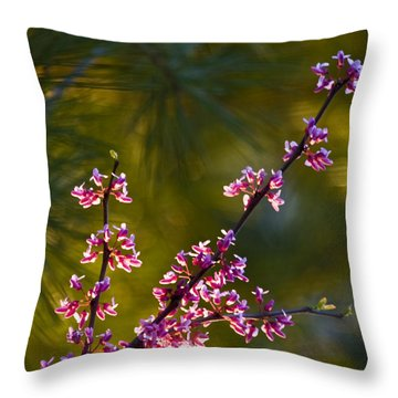 Redbud Throw Pillow by Rob Travis