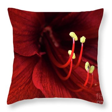 Ref Lily Throw Pillow by Carlos Caetano