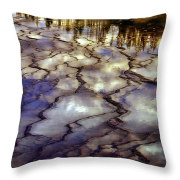 Reflections Throw Pillow by Ellen Heaverlo