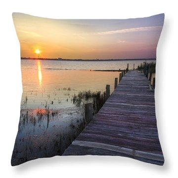Renewal Throw Pillow by Debra and Dave Vanderlaan