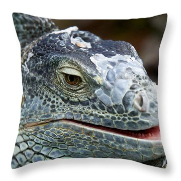 Rhinoceros Iguana Throw Pillow by Fabrizio Troiani