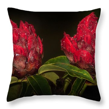 Rhododendron Throw Pillow by Svetlana Sewell
