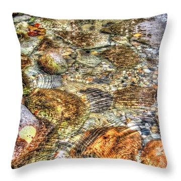 Ripple Effect Throw Pillow by Michael Garyet