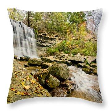 Rock Glen Falls Throw Pillow by Cale Best