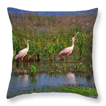 Roseate Spoonbills Throw Pillow by Louise Heusinkveld