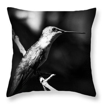 Ruby-throated Hummingbird - Signature Throw Pillow by Travis Truelove