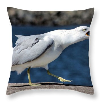 Ruffled Feathers Throw Pillow by Kristin Elmquist