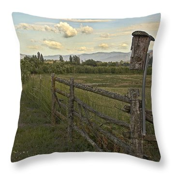 Rural Birdhouse On Fence Throw Pillow by Mick Anderson