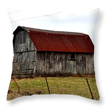 Rustic Barn 2 Throw Pillow by Marty Koch