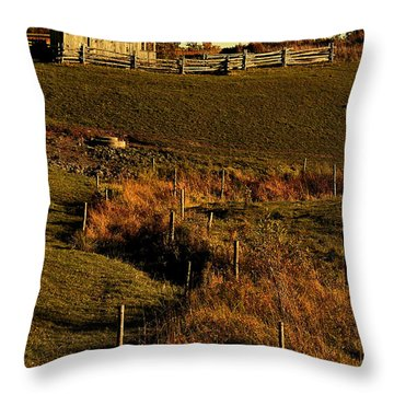 S Path Throw Pillow by Aimelle