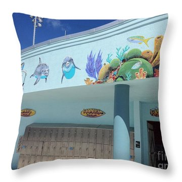 Sailfish Splash Park 4 Throw Pillow by Carey Chen