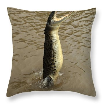 Salt Water Crocodile Throw Pillow by Bob Christopher