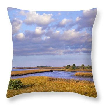 Saltwater Marshes At Cedar Key Florida Throw Pillow by Tim Fitzharris