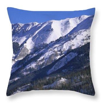 San Juan Mountains Covered In Snow Throw Pillow by Tim Fitzharris