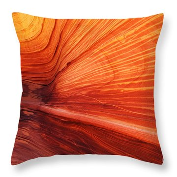 Sandstone Wave  Throw Pillow by Dennis Hedberg