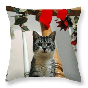 Santa Throw Pillow by LeeAnn McLaneGoetz McLaneGoetzStudioLLCcom