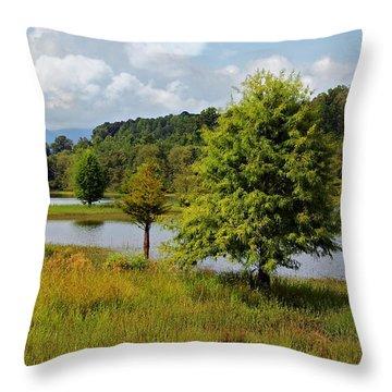 Scenic Lake With Mountains Throw Pillow by Susan Leggett