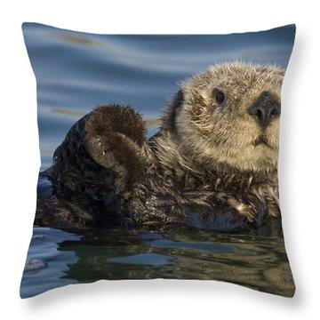 Sea Otter Monterey Bay California Throw Pillow by Suzi Eszterhas